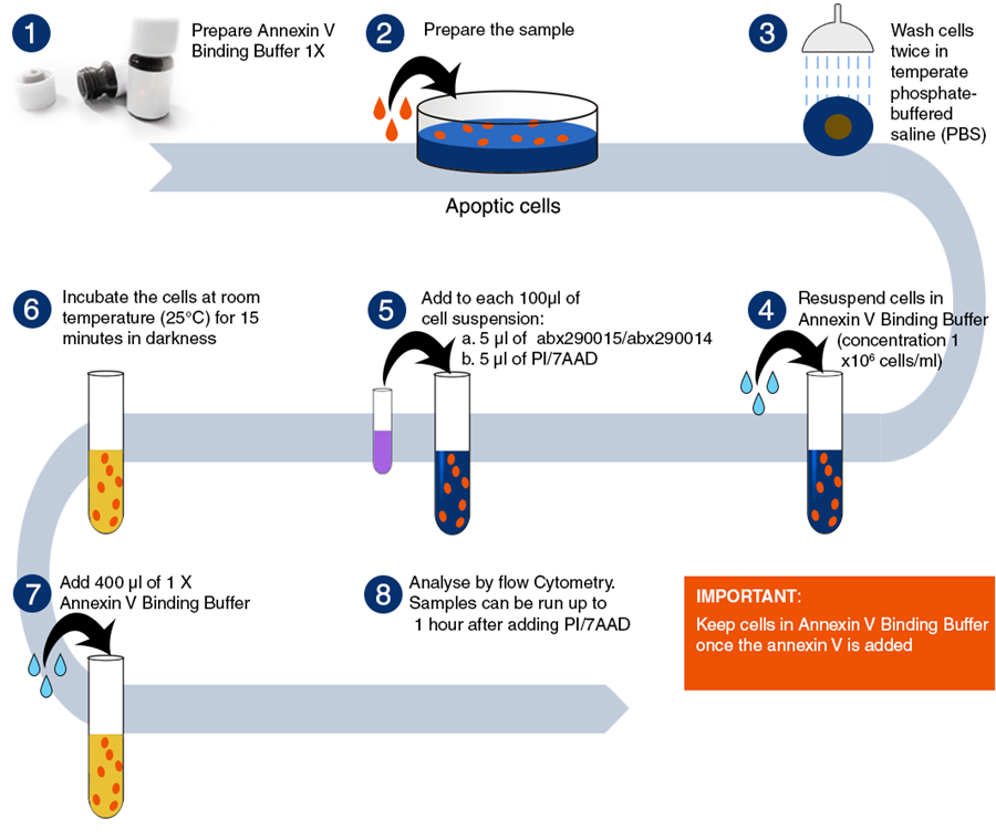 Latest News from the Antibody Resource Page